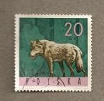 Sellos de Europa - Polonia -  Lobo