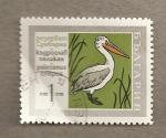 Stamps Bulgaria -  Pelícano de dalmacia