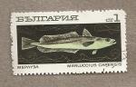 Stamps Bulgaria -  Pez Merluccius capensis