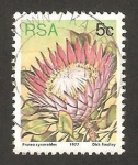 Stamps : Africa : South_Africa :  flor protea cynaroides, protea rey