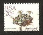 Sellos del Mundo : Africa : Sudáfrica : Flora, conophytum mundum