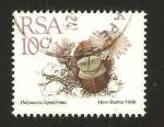 Sellos del Mundo : Africa : Sudáfrica :  flora, didymaotus lapidiformis