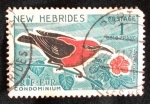 Stamps Oceania - New Hebrides -  myzomela cardinalis