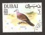 Stamps Asia - United Arab Emirates -  Dubai, ave turtle dove