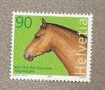 Stamps Switzerland -  100 Aniversario mercado concurso equino