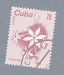 Stamps Cuba -  Azucena