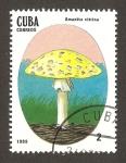 Sellos del Mundo : America : Cuba : setas