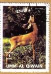 Stamps Asia - Saudi Arabia -  Animales