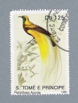 Stamps São Tomé and Príncipe -  Paeadisea Apoda