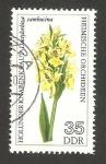 Sellos de Europa - Alemania -  1814 - orquídea, dactylorhiza sambucina