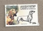 Stamps Asia - Cambodia -  Perro Teckel de pelo raso