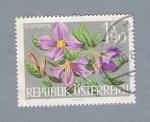 Stamps Austria -  Clematis