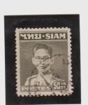 Stamps Asia - Thailand -  Rey Bhumipol Rama IX