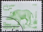 Stamps Asia - Afghanistan -  Sus scrofa