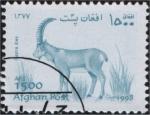 Stamps Asia - Afghanistan -  Capra bies