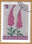 Stamps Bulgaria -  Flores