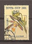 Stamps Russia -  Orquideas.