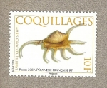 Stamps Oceania - Polynesia -  Conchas