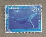 Stamps Oceania - Polynesia -  Ballena