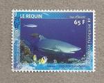 Stamps Oceania - Polynesia -  Tiburón