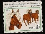Sellos de Europa - Alemania -  40 Congreso Internacional cria de caballos de Estados Socialistas