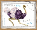 Stamps Asia - United Arab Emirates -  FUJEIRA, Aves