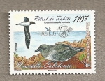 Stamps New Caledonia -  Aves