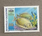 Stamps Oceania - New Caledonia -  Pez Raya Picot