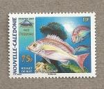 Sellos de Oceania - Nueva Caledonia -  Salmonete de noche