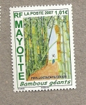 Stamps Africa - Mayotte -  Bambús gigantes
