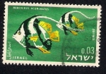 Sellos de Asia - Israel -  Heniochus Acuminatus
