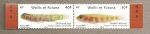 Stamps Oceania - Wallis and Futuna -  Peces Eviota y Trimma