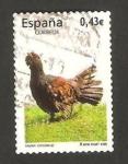 Stamps Spain -  4467 - fauna, urogallo