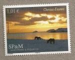 Sellos del Mundo : America : San_Pierre_&_Miquelon : Caballo de la aurora