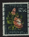 Stamps : Africa : South_Africa :  Planta