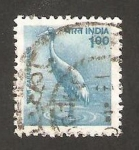 Stamps : Asia : India :  fauna, grulla sarus