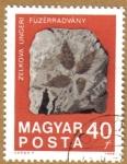 Sellos de Europa - Hungría -  Zelkova planta Fosiles