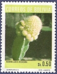Sellos de America - Bolivia -  BOLIVIA Mammillaria bocasan 0.50
