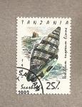 Stamps Africa - Tanzania -  Molusco Vexilum rugosum