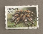 Sellos de Africa - Tanzania -  Araña Eurypelma
