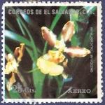 Sellos de America - El Salvador -  EL SALVADOR Orquídea amarilla 25 aéreo