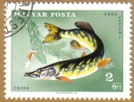 Stamps Hungary -   Peces, ESOX