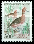 Stamps : Europe : France :  Fuligule Nyroca