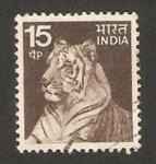 Stamps India -  un tigre