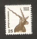 Stamps India -  antílope