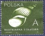 Stamps Poland -  POLONIA Caracola A