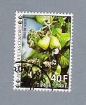 Stamps Africa - Comoros -  Noix de Cachou