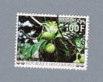 Stamps Africa - Comoros -  Arbrea a Pain