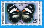 Stamps Africa - Cameroon -  Mariposa