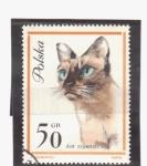Sellos de Europa - Polonia -  Gato siames